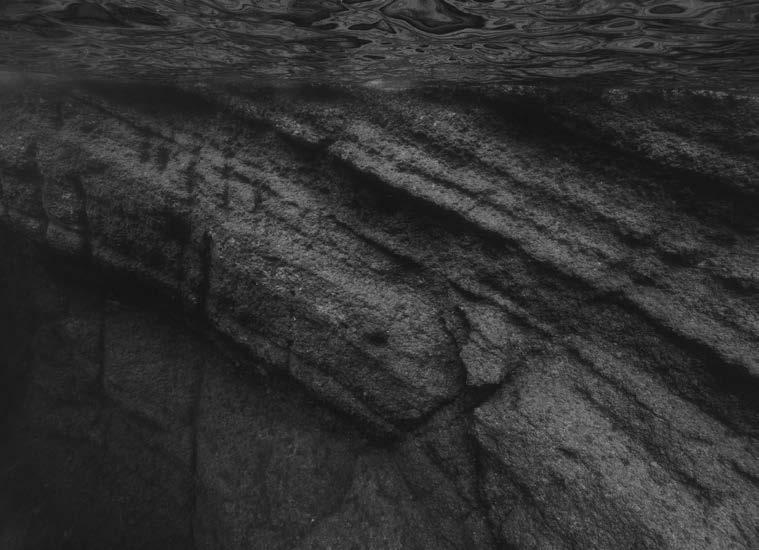 © Nicolas Floc'h_Paysages productifs, invisible, Cap Sugiton, - 15m, 2019